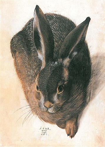 hare-1528-1.jpg!Blog
