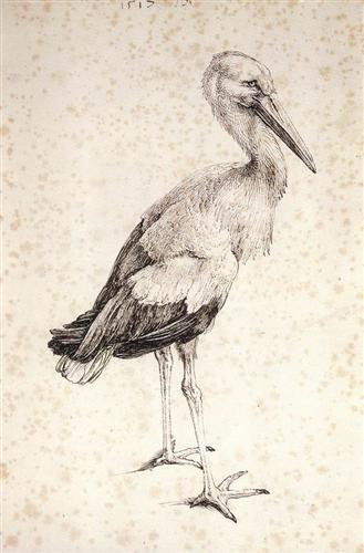 the-stork-1515.jpg!Blog