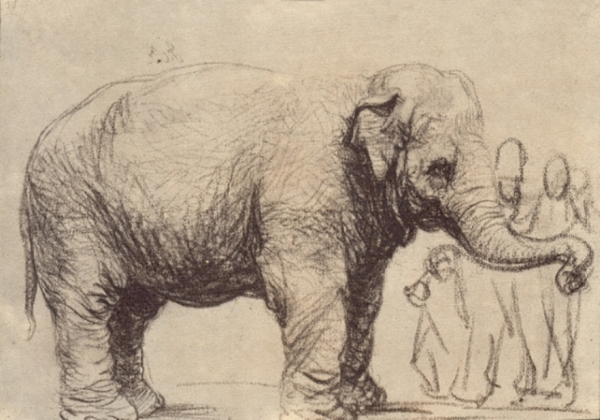 http://uploads5.wikiart.org/images/rembrandt/an-elephant-1637.jpg