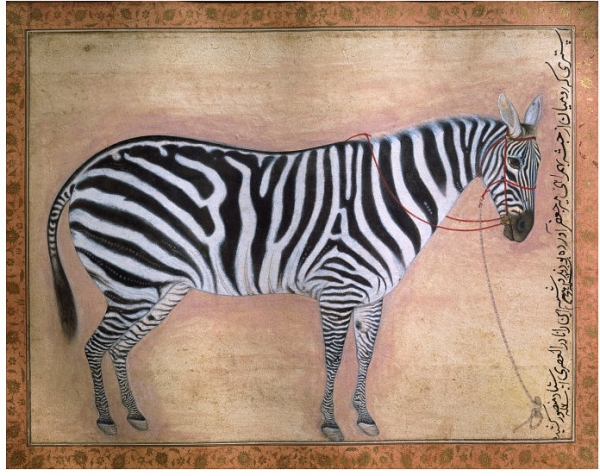 http://uploads2.wikiart.org/images/ustad-mansur/zebra-1621.jpg