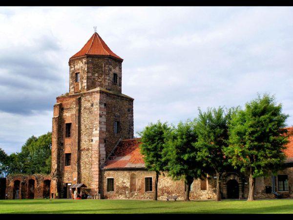 http://img2.national-geographic.pl/uploads/photo/115/115816/zamek-w-toszku-zamek-w-toszku-i-rynek-2009-115816-large.jpg