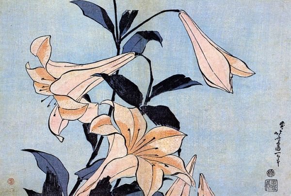 http://cultured.com/images/image_files/17/59_o_lilies.jpg