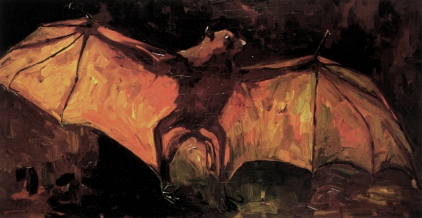 flying-fox-1886(1)