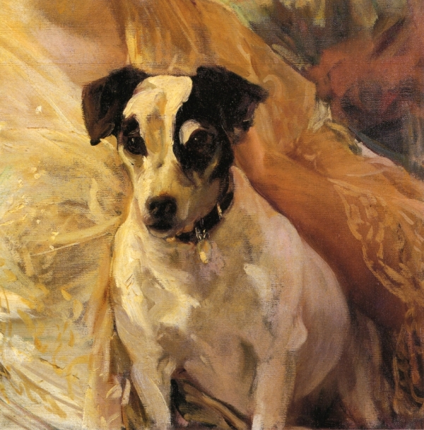 portrait-of-a-jack-russell-1909